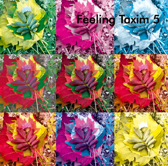 CD-Cover | Feeling Taxim 5
