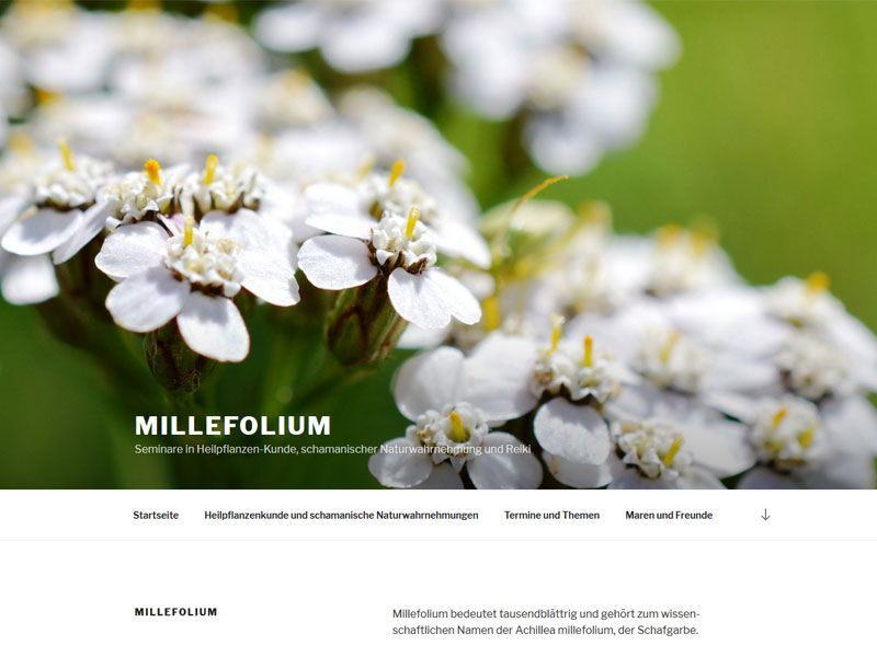 Millefolium – Maren Axt